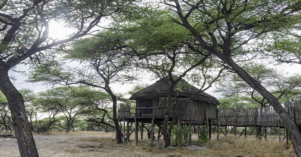 Onguma Tree Top Camp